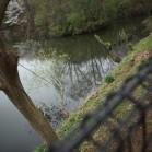 第一回 「赤羽自然観察公園」